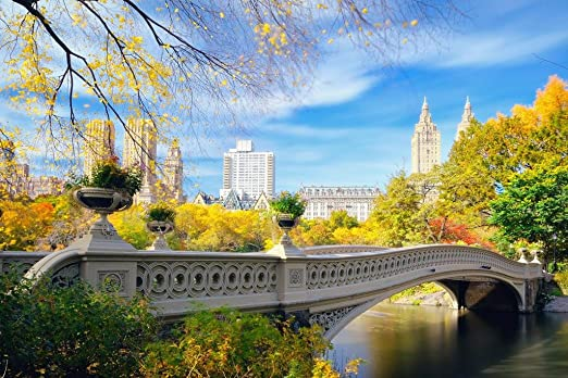 Park Art|My WordPress Blog_27+ Bow Bridge Central Park Artwork  Gif