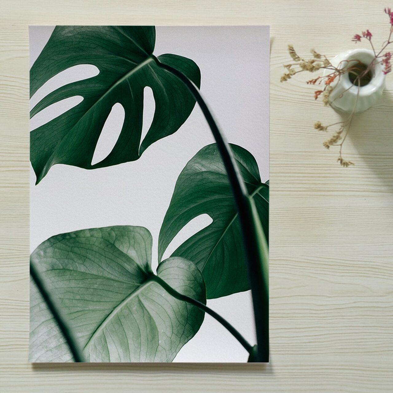 Park Art|My WordPress Blog_Get Posters Or Prints  Background