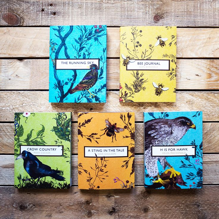 Park Art My WordPress Blog_Childrens Books About The Birds And The Bees
