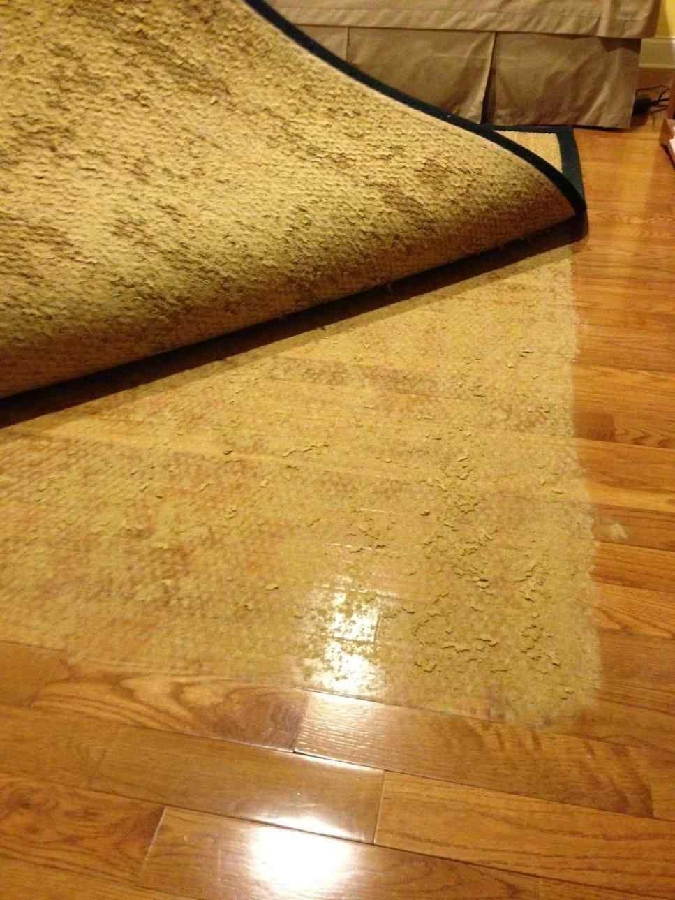 Park Art My WordPress Blog_Rugs For Hardwood Floors Backing