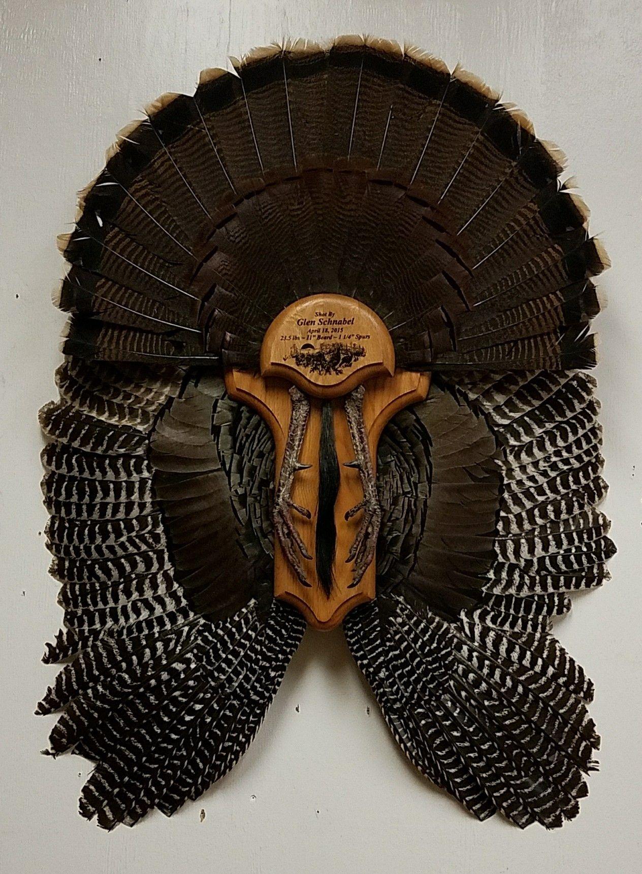 Park Art|My WordPress Blog_How To Mount A Turkey Fan And Wings