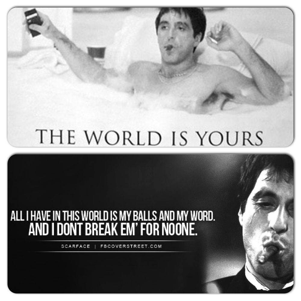 Park Art My WordPress Blog_Scarface The World Is Yours Tony Quotes