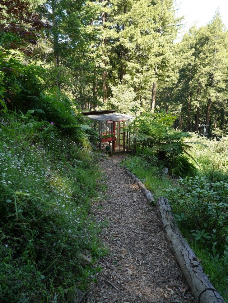 Park Art|My WordPress Blog_Bobs Tree Service Mill Valley