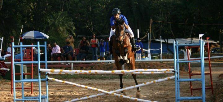 Park Art|My WordPress Blog_Horse Riding Classes In Bangalore