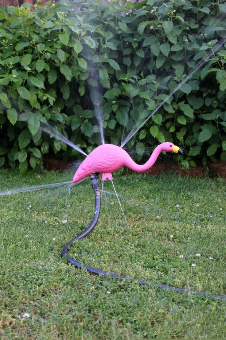 Park Art|My WordPress Blog_What Does It Mean When You Put Flamingos In Your Yard
