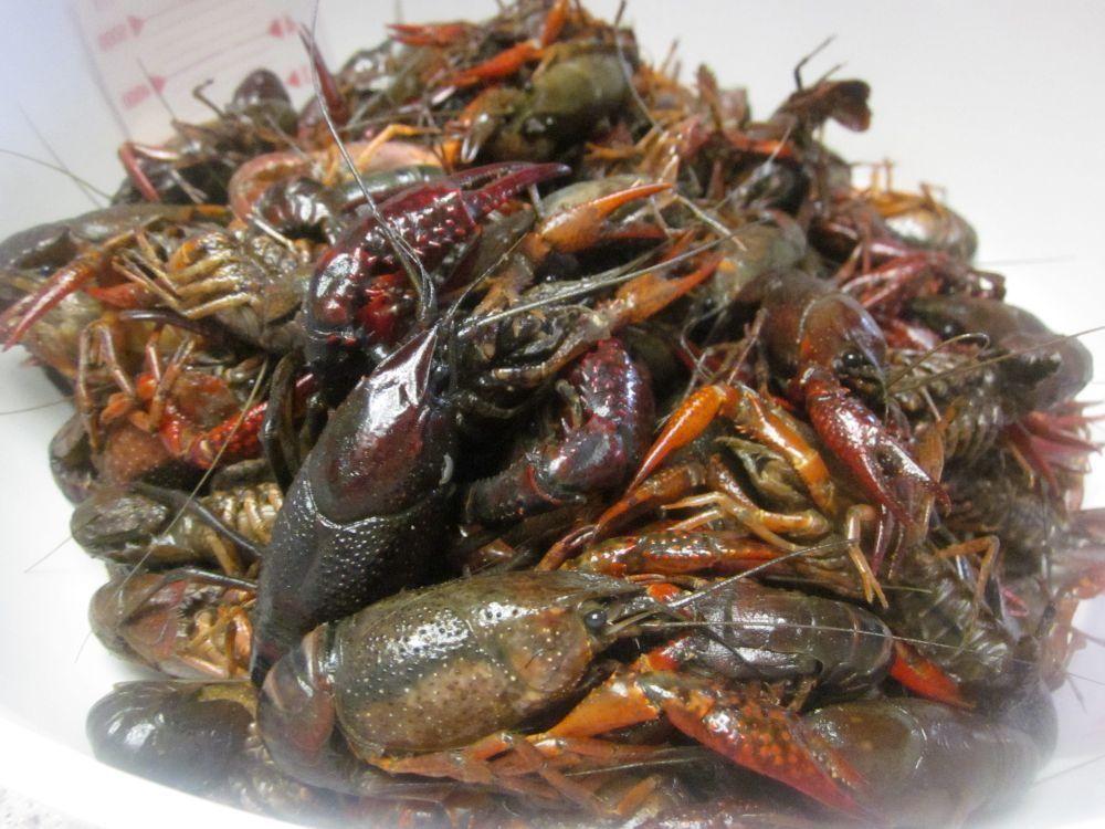 Park Art My WordPress Blog_How Much Crawfish And Shrimp Per Person