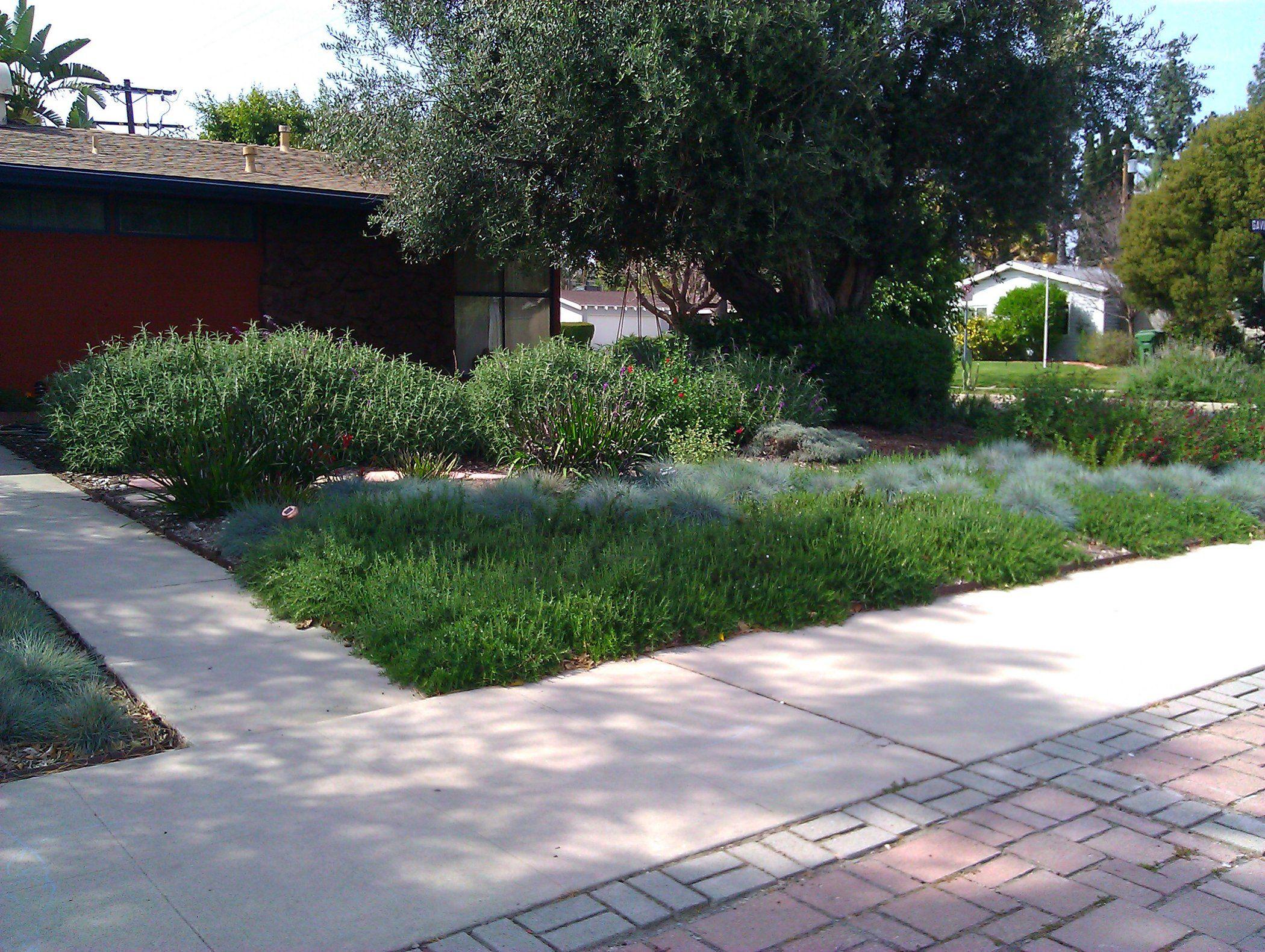 Park Art|My WordPress Blog_Weeding And Mulching Services Near Me