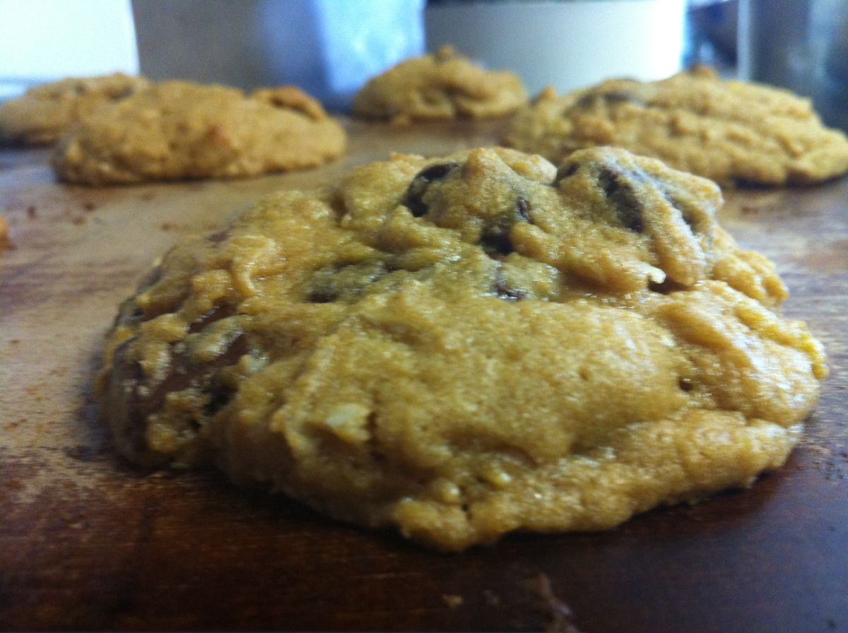 Park Art My WordPress Blog_Chick Fil A Cookie Recipe Without Crisco