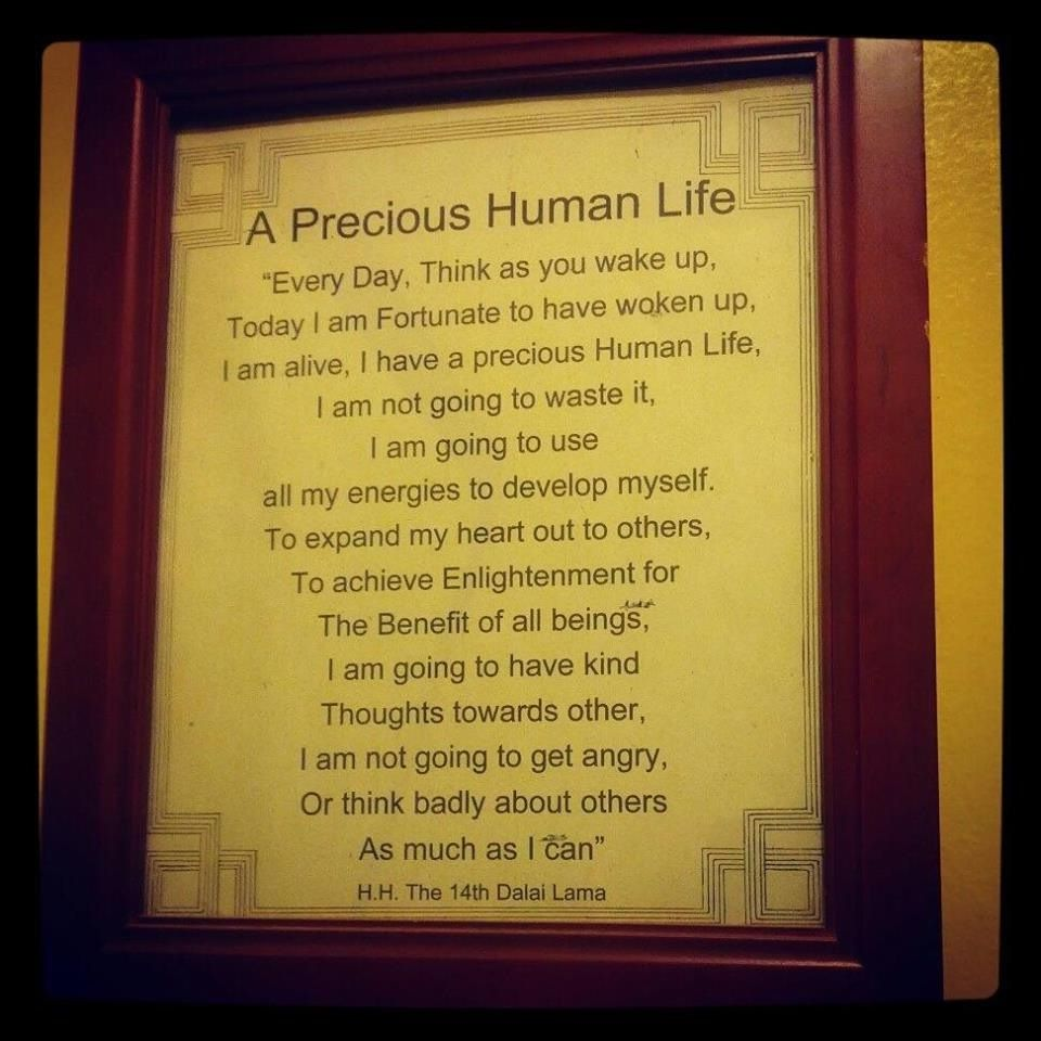 Park Art|My WordPress Blog_Human Life Is Precious Quotes