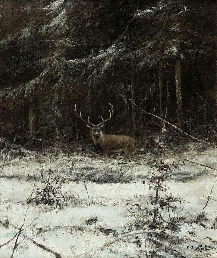 Park Art|My WordPress Blog_Where Do Deer Sleep In The Winter