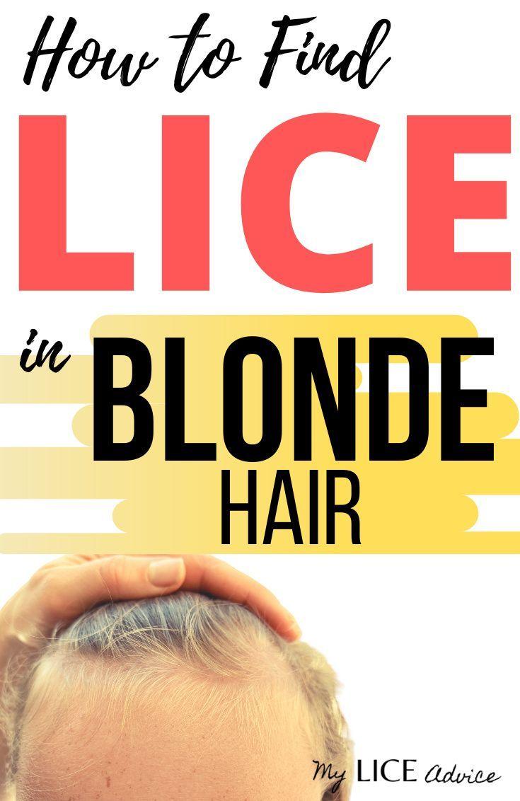 Park Art My WordPress Blog_Lice Bugs In Blonde Hair