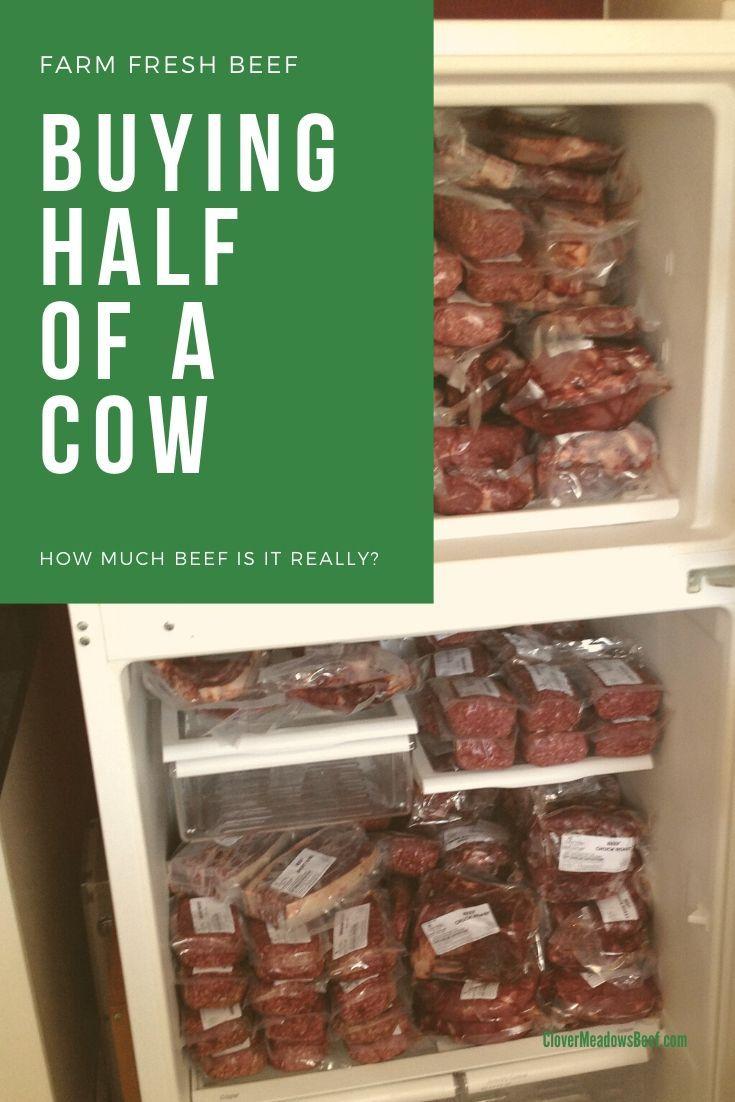 Park Art My WordPress Blog_Buy Half A Cow Kentucky