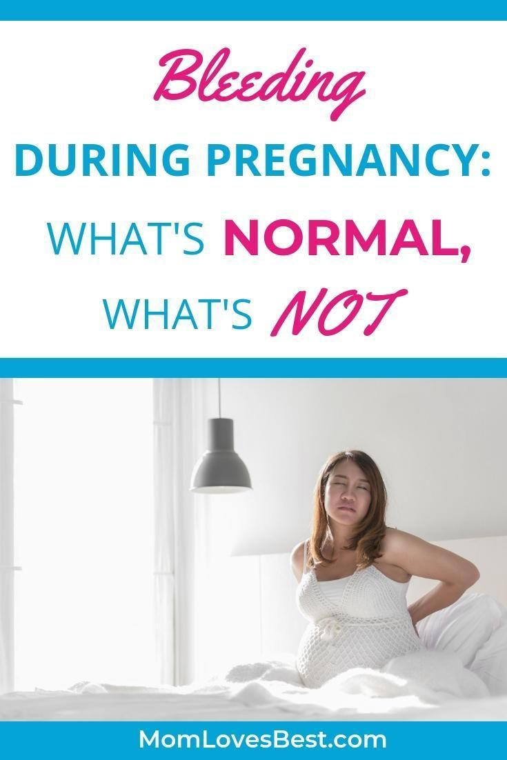 Park Art|My WordPress Blog_How Often Should You Go To The Chiropractor When Pregnant
