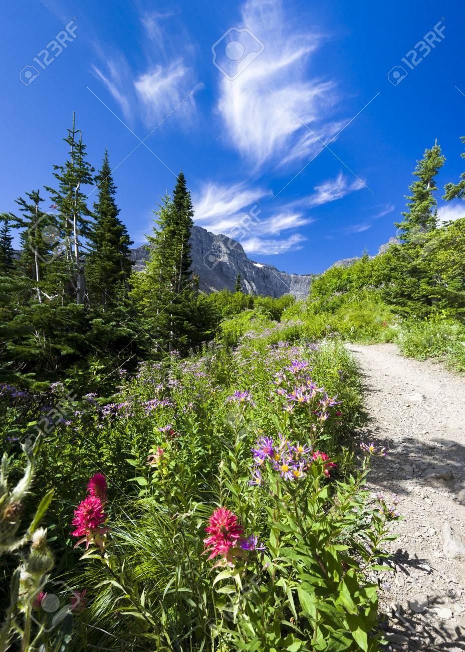 Park Art My WordPress Blog_22+ Glacier National Park Picture Frames  Images