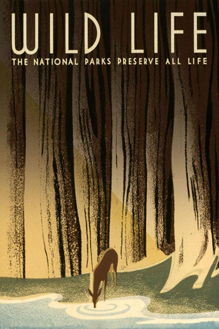 Park Art|My WordPress Blog_17+ National Park Poster Wallpaper  Images