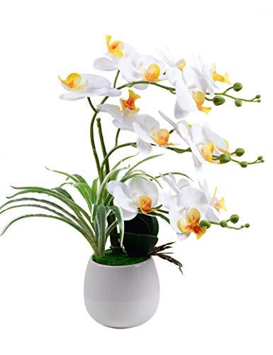 Park Art|My WordPress Blog_artificial plants & flowers