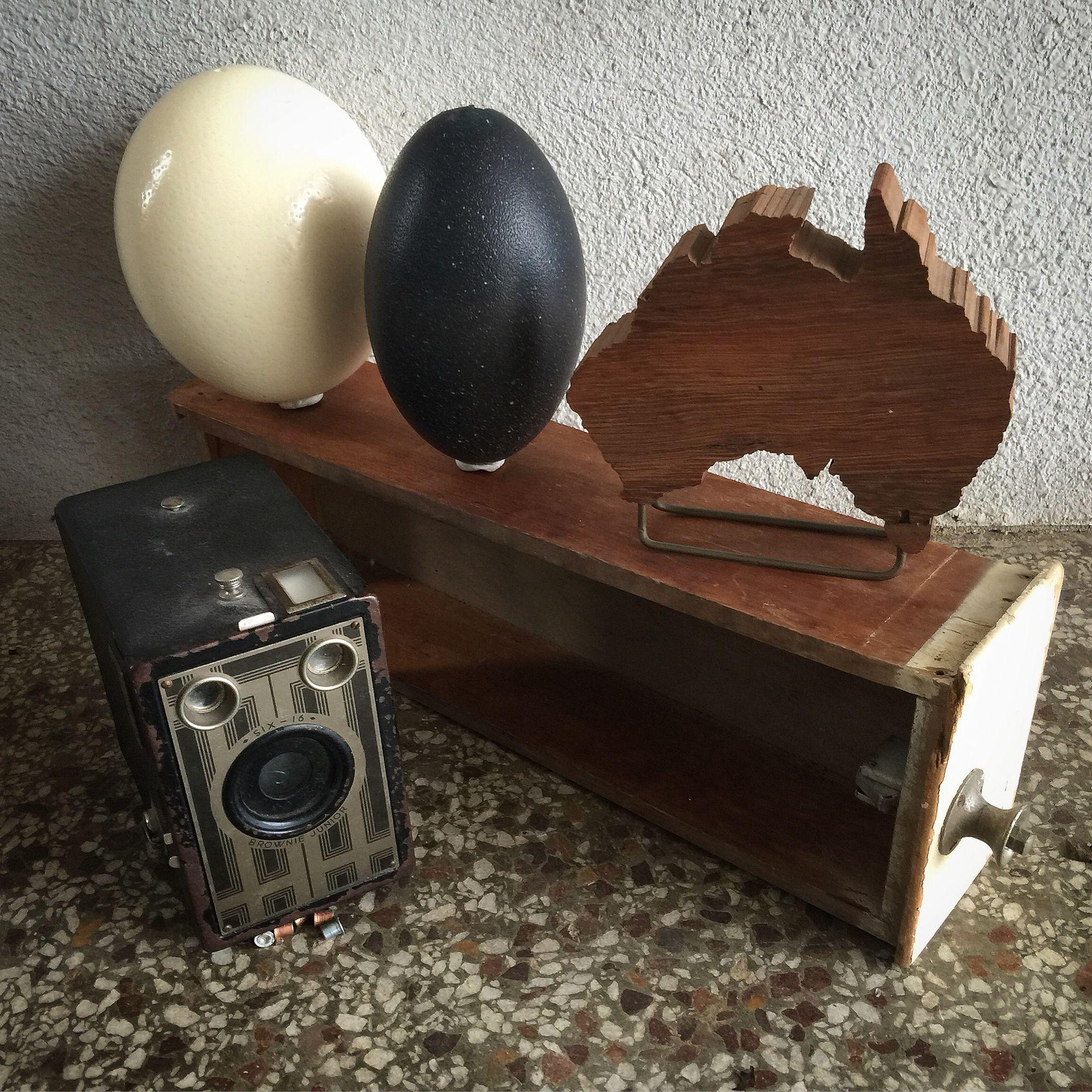 Park Art|My WordPress Blog_Where Can I Buy An Ostrich Egg Uk