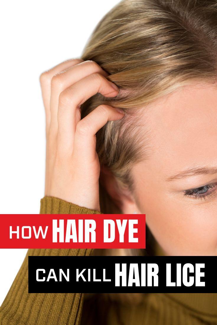 Park Art My WordPress Blog_Do Hair Dye Kill Lice