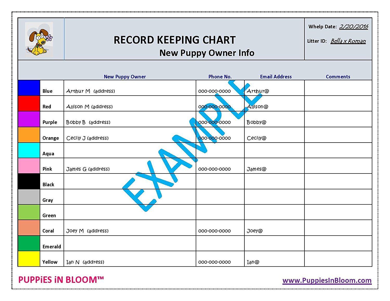 Park Art|My WordPress Blog_Roosevelt Dog Food Feeding Chart