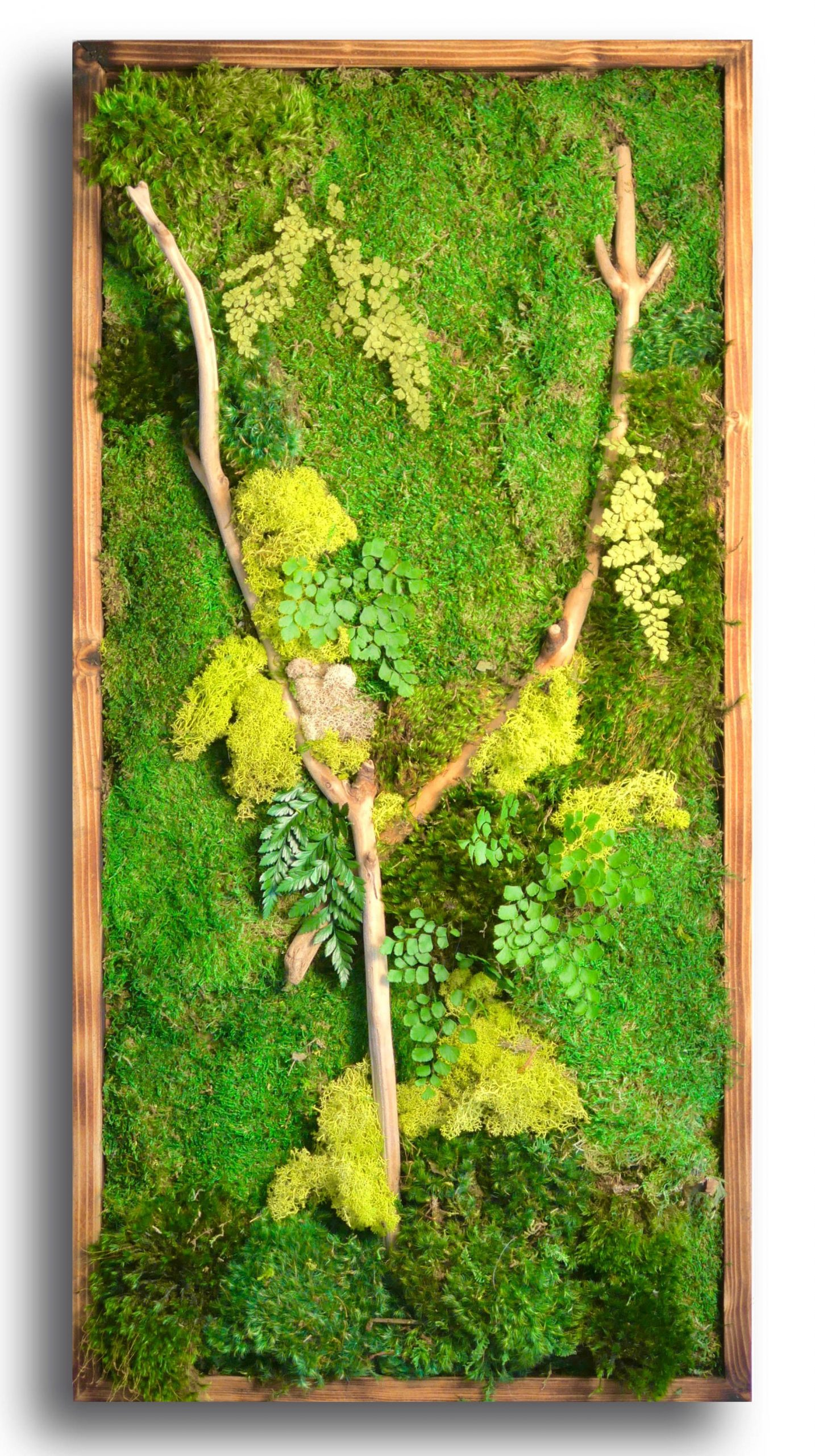 Park Art My WordPress Blog_Preserved Moss Wall Art Kit