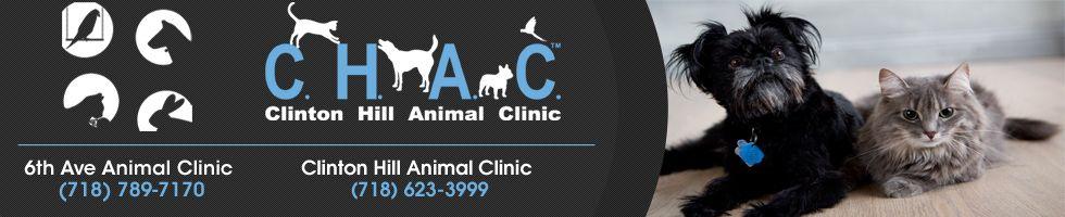 Park Art My WordPress Blog_Club Hill Animal Clinic In Garland Texas