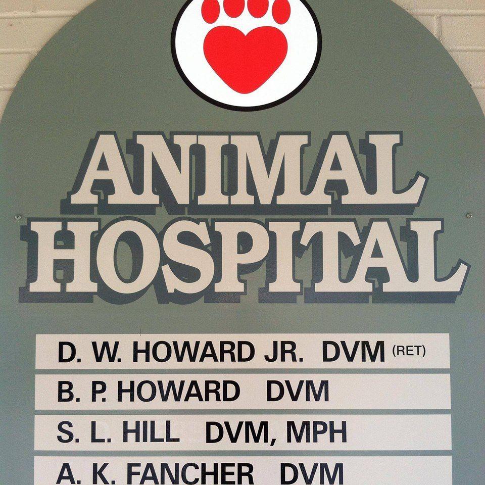 Park Art My WordPress Blog_Arlington Dog And Cat Hospital Reviews