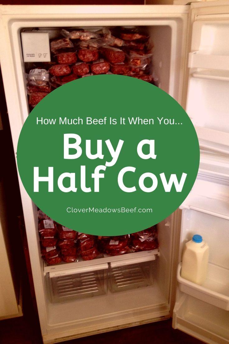 Park Art|My WordPress Blog_Buy A Whole Cow Meat