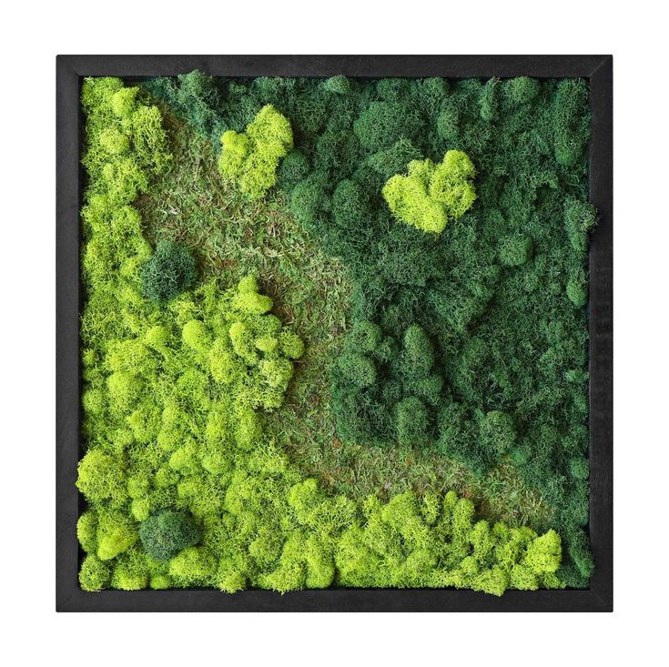 Park Art My WordPress Blog_Preserved Moss Wall Art For Sale