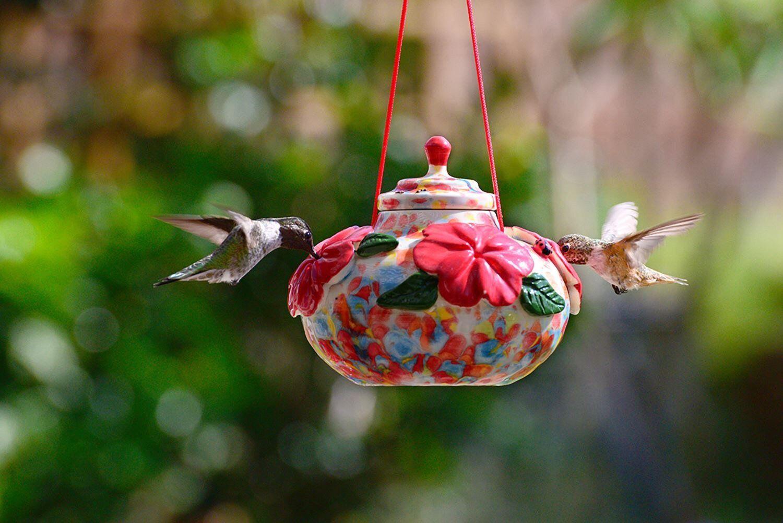 Park Art|My WordPress Blog_Hummingbird Feeder Replacement Red Flowers