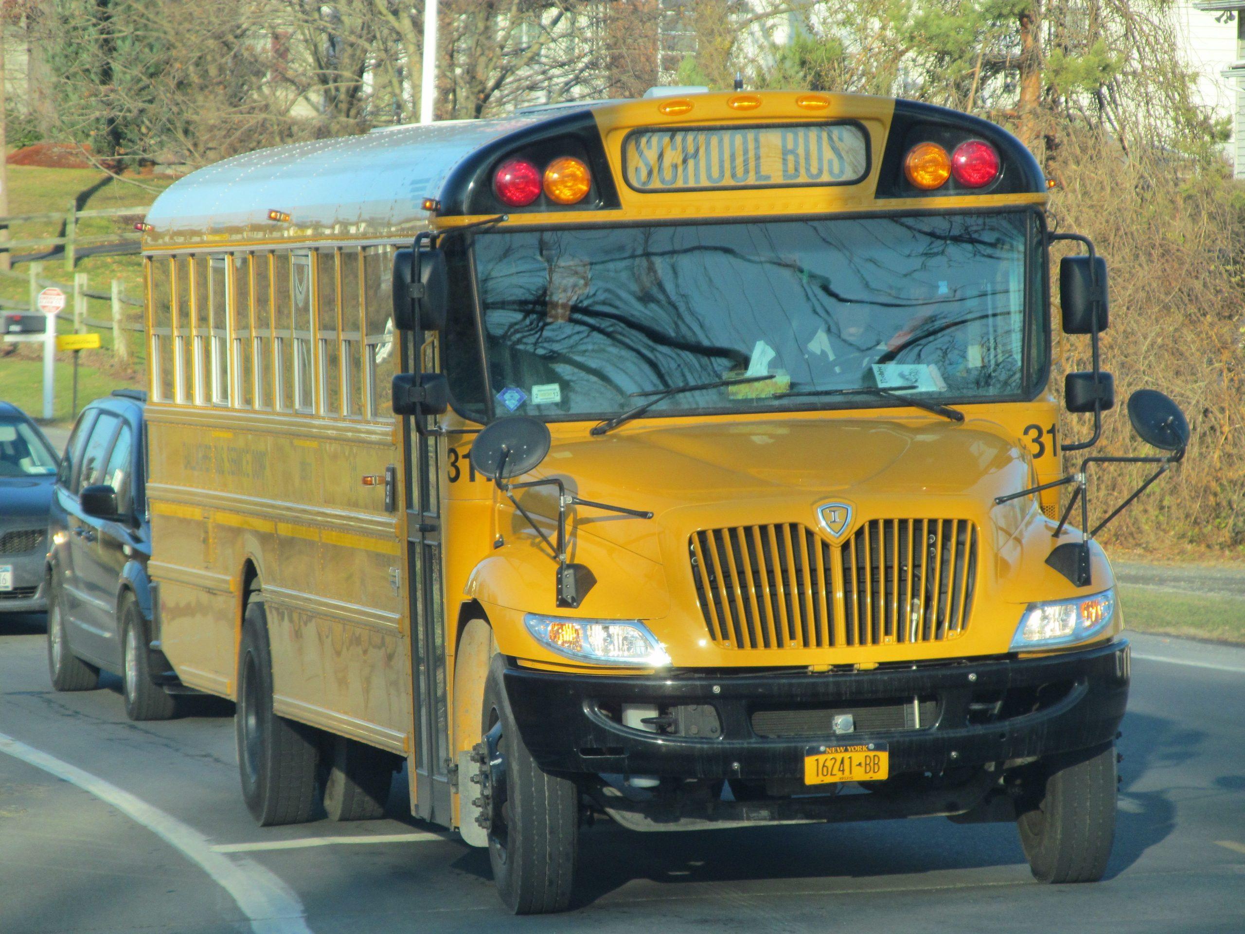 Park Art|My WordPress Blog_School Bus For Sale Craigslist Alabama