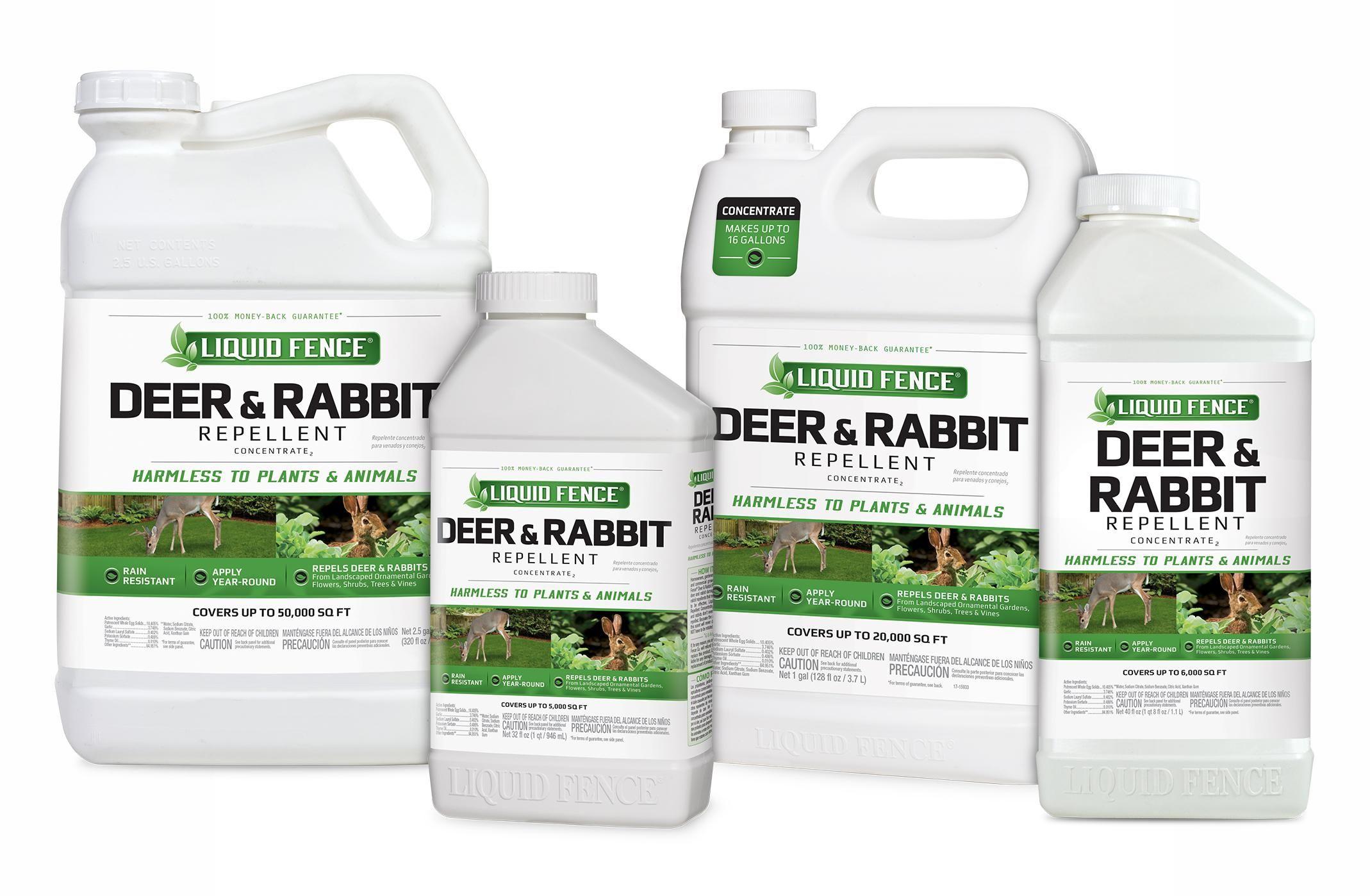 Park Art|My WordPress Blog_I Must Garden Rabbit Repellent Ingredients